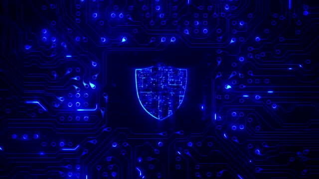 Network security. Shield with circuit board. Firewall. Technology. Loopable. Zoom. video