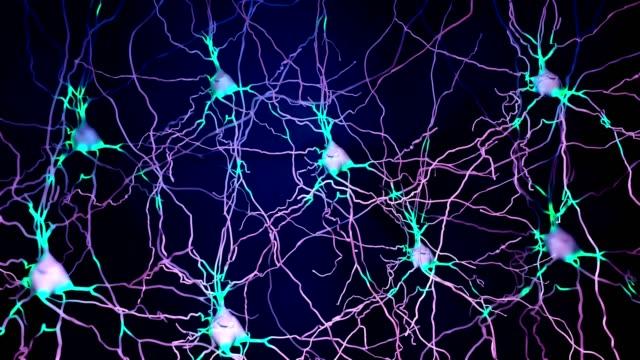 stockvideo's en b-roll-footage met neuron cel die informatie doorgeeft - brain
