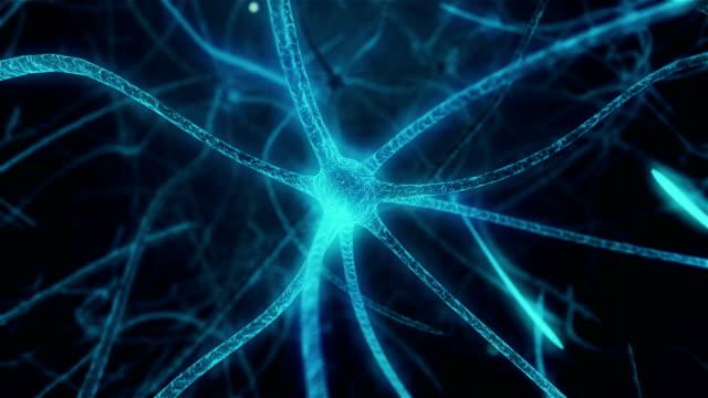 vídeos de stock e filmes b-roll de neuron in process of synapse in neuron cell of neuronal human tissue - sistema nervoso humano