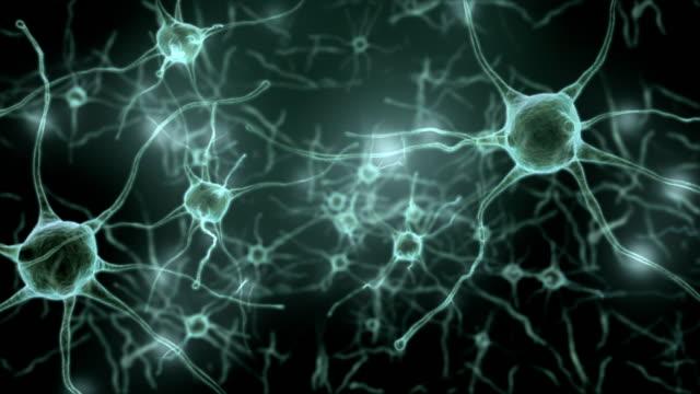 vídeos de stock e filmes b-roll de neuron network and synapse,inside the human brain,loop able - sistema nervoso humano