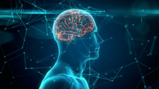 neuronal aktivitet. 3d-animering av blå konceptuella mänskliga hjärnan. - minne bildbanksvideor och videomaterial från bakom kulisserna