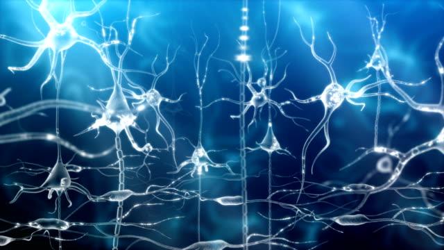 Neuronal Activity Female Blue video