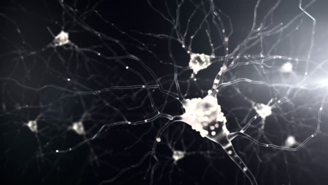 4K Neuronal Activity. 4K Neuronal Activity. Seamless looping human cell stock videos & royalty-free footage