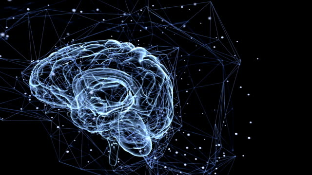 Neuronal connections. Seamless looping video