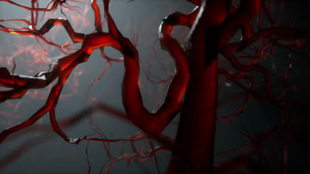 4k neurone sinaps ağ loopable - biyomedikal animasyonu stok videoları ve detay görüntü çekimi