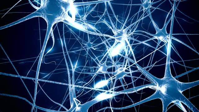 Neurons in brain. Loop. 3D animation of neural network.