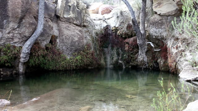 cascata del nevada - red rock canyon national conservation area video stock e b–roll
