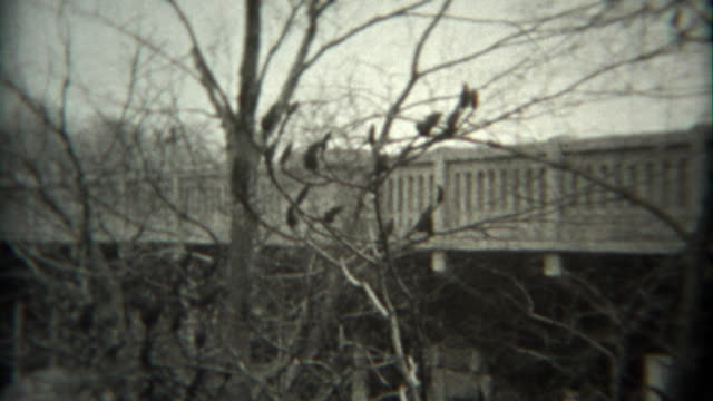 1936: New bridge style inspection from top deck down to foundations. video
