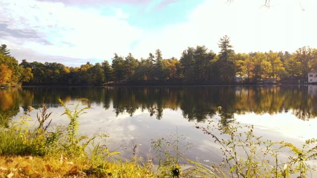 New England Lake - Morning video