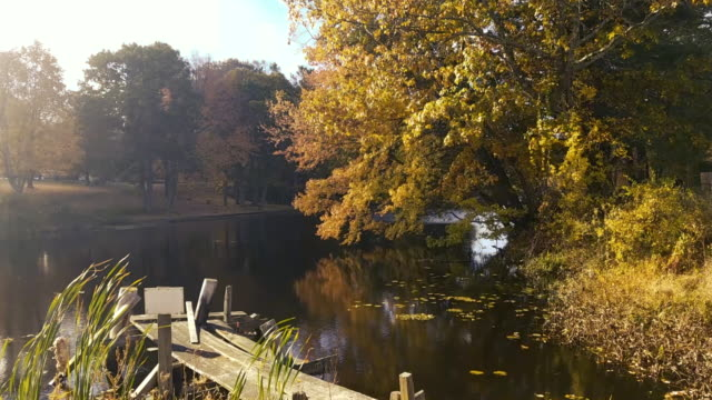 New England Pond and Dock in the Fall video