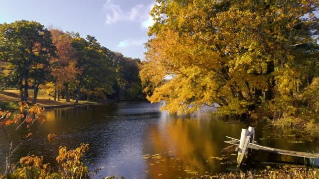 New England Pond - Autumn video