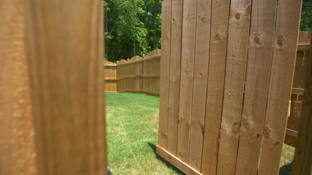 New Fence Gate Opens to Reveal Backyard