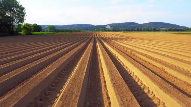 new plowed potato field and walhalla memorial in spring - молодой картофель стоковые видео и кадры b-roll