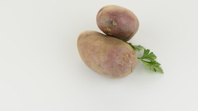 neue kartoffel tuber - knollig stock-videos und b-roll-filmmaterial