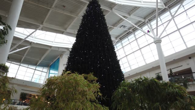 New Year 's tree in a mall.