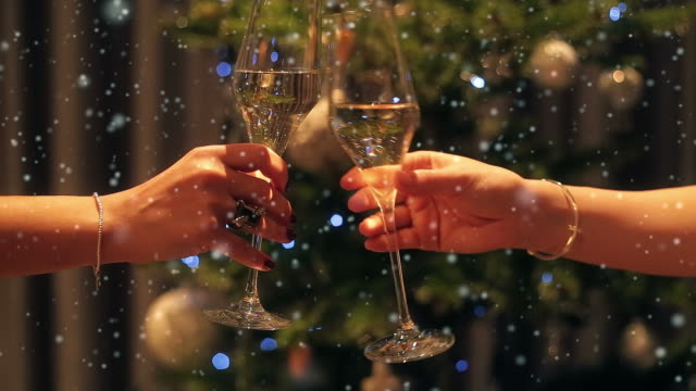 New Years Eve champagne toast. video