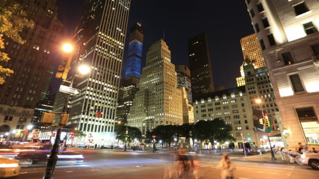 New York City: 59th street and Central Park video