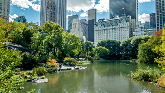 new york city, skyline from central park - пруд стоковые видео и кадры b-roll