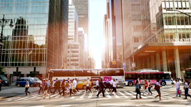 New York on Sunny Day with Many People on the Streets. New York's City Life in Summertime with Pedestrians. free stock without watermark stock videos & royalty-free footage