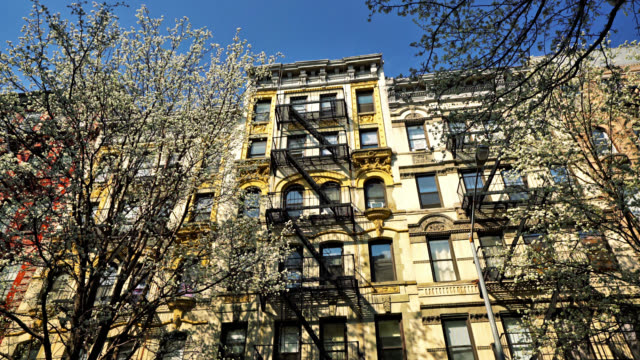 new york spring. cherry blossoms. typical residence building - манхэттен стоковые видео и кадры b-roll