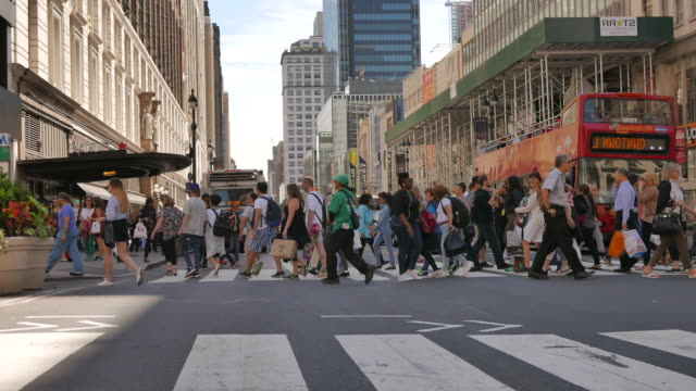 New York's Streets with Pedestrian and Skyscrapers. Large City in the USA. Crossroad in the Mayor City New York in USA. free stock without watermark stock videos & royalty-free footage