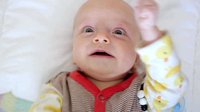 newborn considers toys video