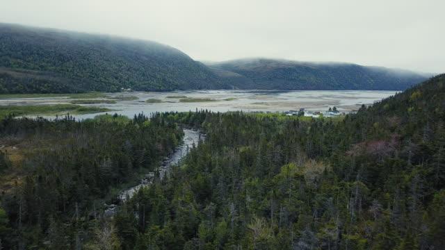ニューファンドランド アウトポート ビレッジ - 大西洋点の映像素材/bロール