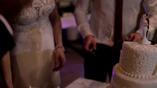 Newlyweds cut the wedding cake video