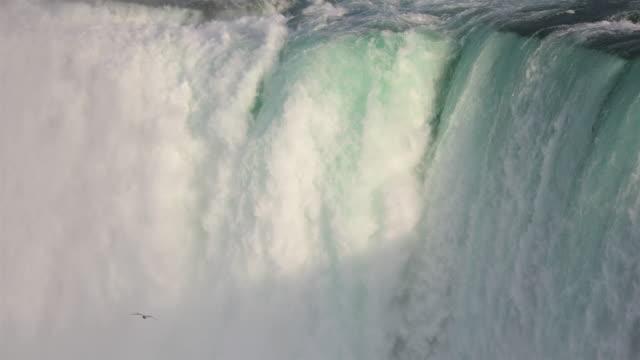 尼亞加拉大瀑布到 4k 視頻 - 州立公園 個影片檔及 b 捲影像