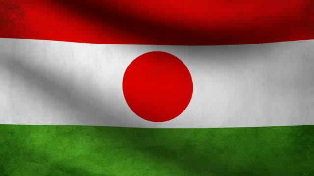 Niger flag. video