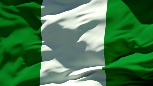 Nigeria Flag video