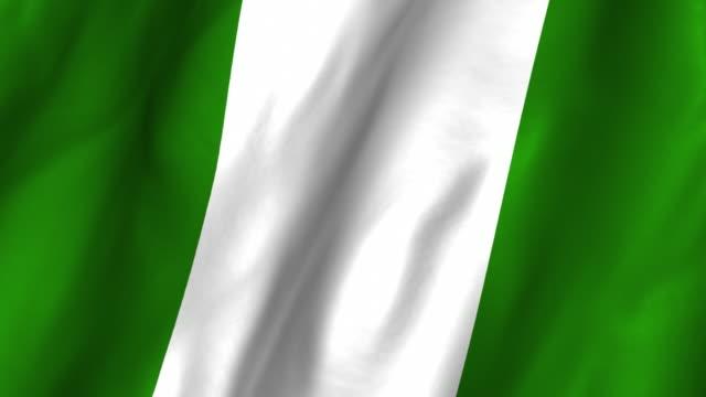 Nigeria Flag - waving, looping video