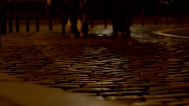 night chaise passing cobblestone road - cocchio video stock e b–roll