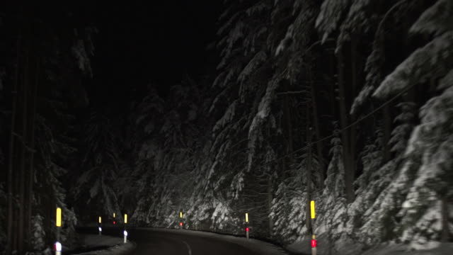 HD Night Drive through Winter Forest Real time night drive through winter forest shot from car point of view.   Shot with LEICA Summilux-R 35mm f/1.4 lens. sicherheit stock videos & royalty-free footage