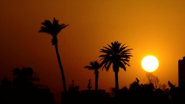Night fall Cairo Egypt video