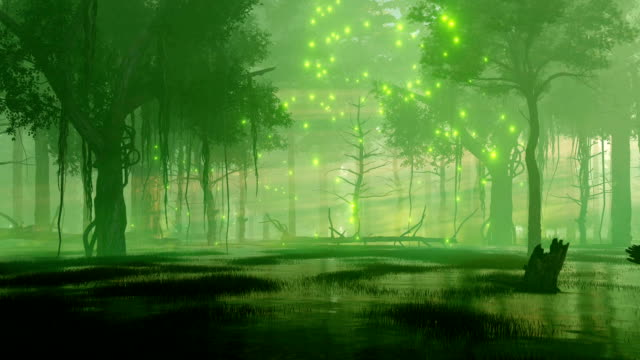 night forest swamp with magical firefly lights - fiaba video stock e b–roll
