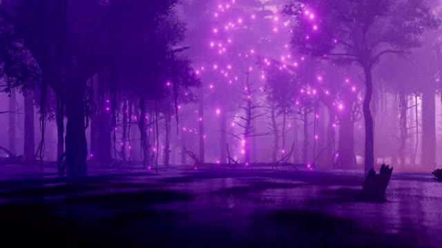 Night forest swamp with mystical firefly lights video