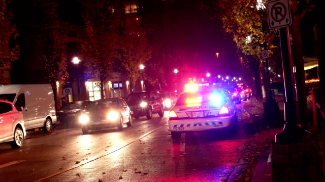 Night outdoor shot of red and blue emergency lights of police car. video