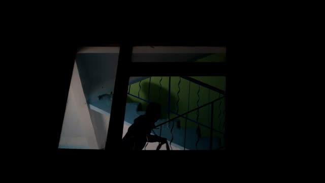 夜強盗バッグ、2 階に行くパートナー、チップオフ強盗の影 - 犯罪者点の映像素材/bロール