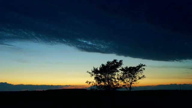 Night scene time-lapse background - Two trees and dark clouds video