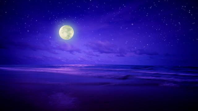 Night sea, sky and moon video