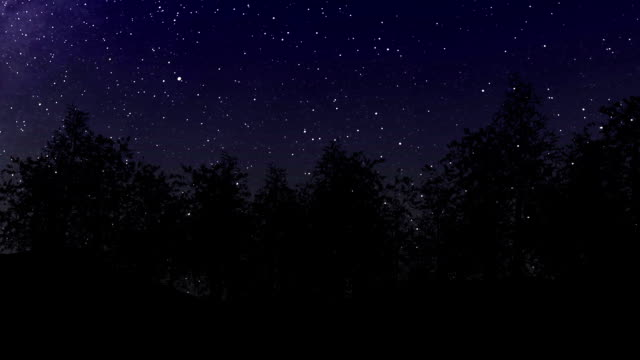 Night Sky, Trees and Breeze video