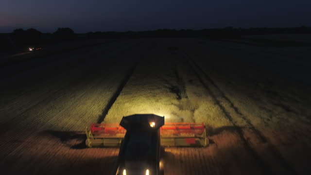 night time harvest using a large combine harvester in a field - colza video stock e b–roll