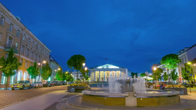 night vilnius town hall square and fountain, time-lapse - lituania video stock e b–roll