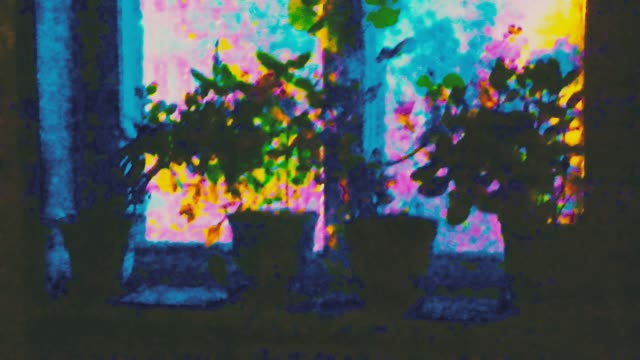 night windowsill flowers abstract dynamic loop motion funky stock videos & royalty-free footage