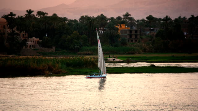 Nile River 'Feluccas' sailboat at sunset near Luxor Egypt video