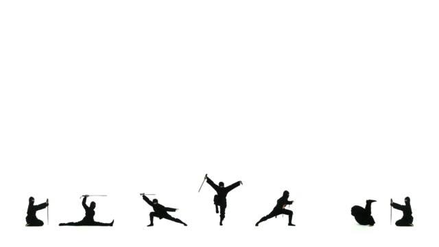 ninja baseline - karate stok videoları ve detay görüntü çekimi