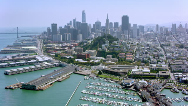 aerial north beach with telegraph hill and the financial district of san francisco in the background - continente americano video stock e b–roll