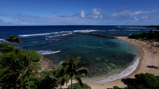 North Shore Hawaii : Beautiful Turtle Bay video