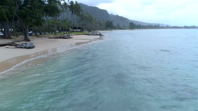 North Shore, Oahu Hawaii travel concepts oahu stock videos & royalty-free footage